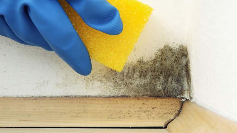 limpiar-manchas-paredes