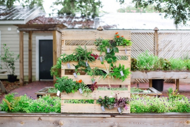 3631960-vertical-garden-pallet-diy-wedding-ideas-camp-makery-11-650-653f174652-1470318349