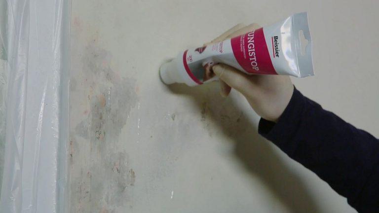 Aprende c mo pintar tu pared con humedad en s lo 6 simples - Papel para paredes con humedad ...