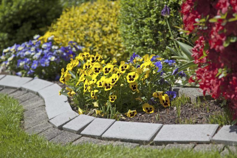No puedes hacer algo en tu jard n por lo peque o que es for Ideas para decorar un jardin pequeno con plantas