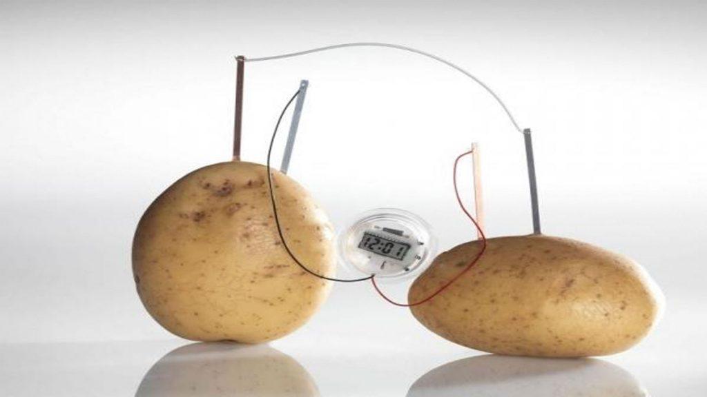 Te imaginas tener energ a el ctrica usando una patata - Clavos de cobre ...