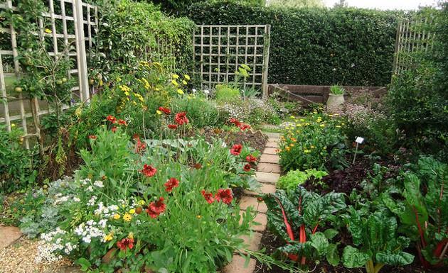 No puedes hacer algo en tu jard n por lo peque o que es for Jardines pequenos y bellos